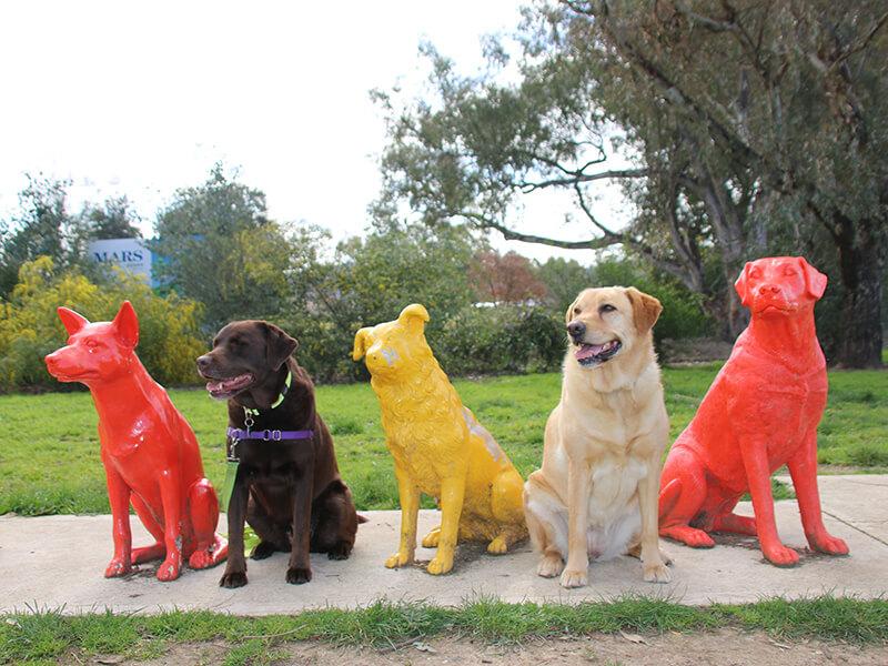 Dog Statues