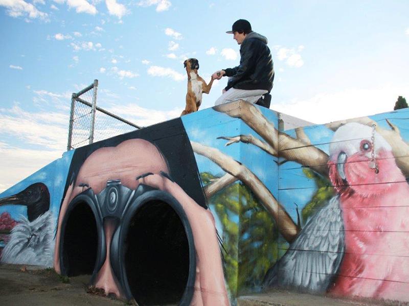 Waites Park Murals