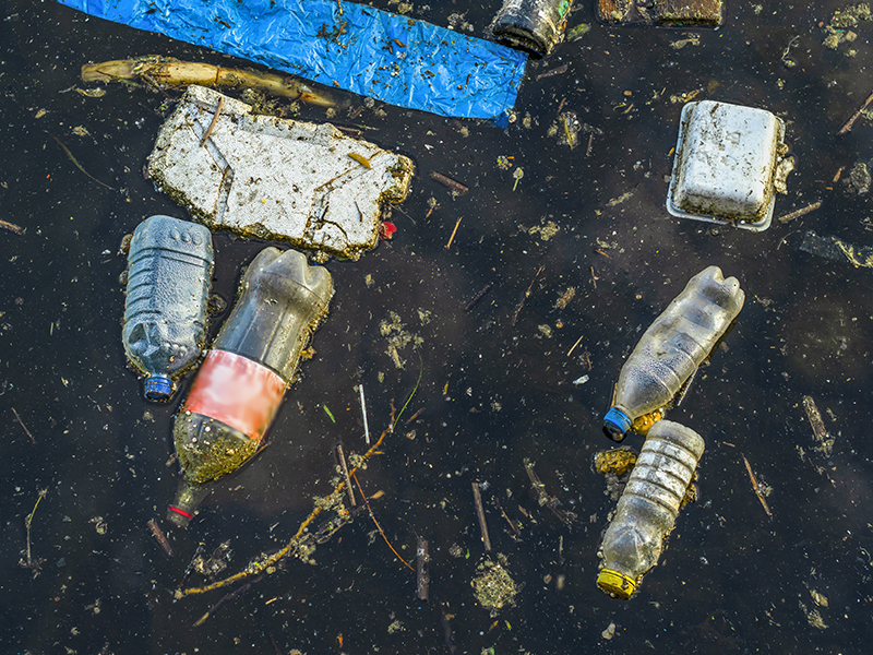 Image of litter in a waterway