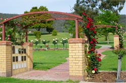 image of rose arbour at Glenmorus Gardens