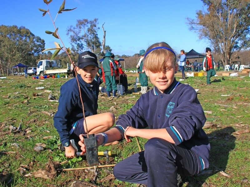 We're all urged to plant trees or shrubs at home this year as National Tree Day falls victim to COVID-19