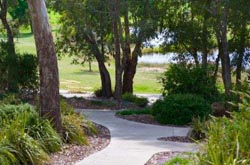 path and bushland at Glenmorus Gardens